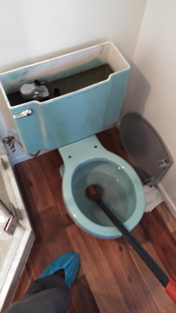 Malibu, CA - Toilet stoppage