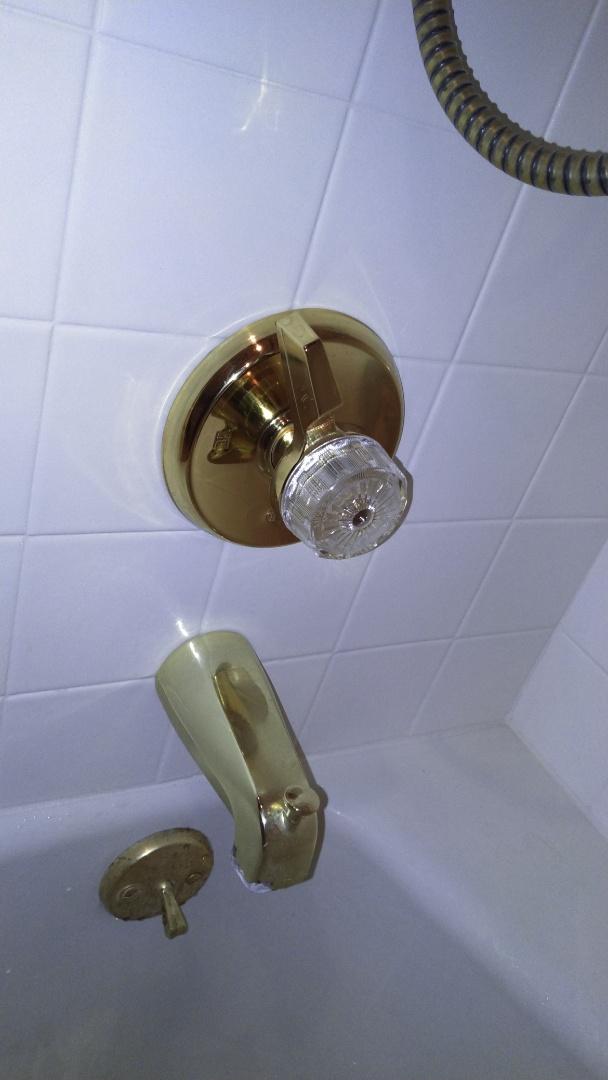 Pasadena, CA - Replaced broken mixet shower handle