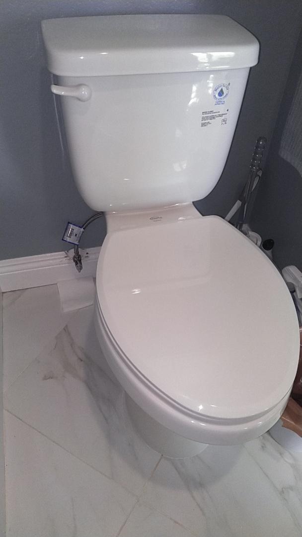 San Juan Capistrano, CA - Toilet repair