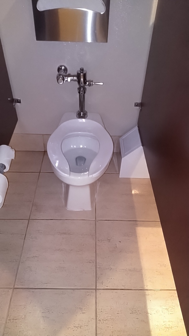 Tustin, CA - Toilet repair