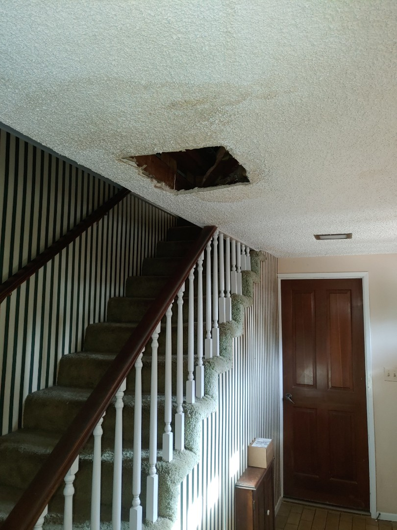Palos Verdes Estates, CA - Leak in the ceiling repair