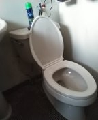 Redondo Beach, CA - Installed toilet