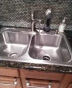Aliso Viejo, CA - Snake kitchen drain