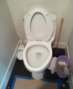 Dana Point, CA - Toilet stoppage