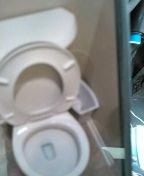 Toilet stoppage