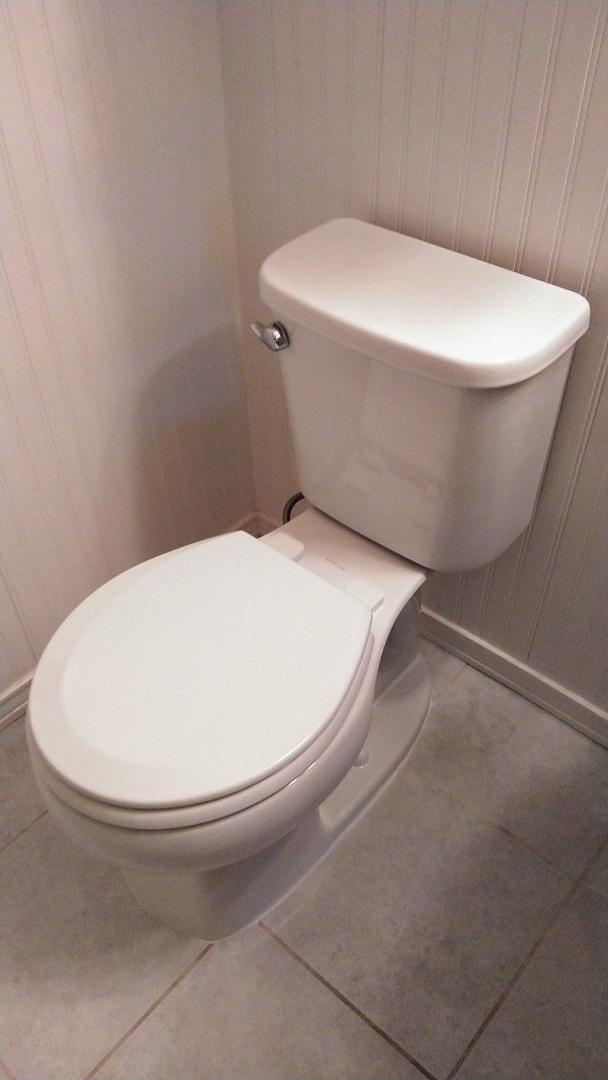 Install new toilet in the hall bathroom.