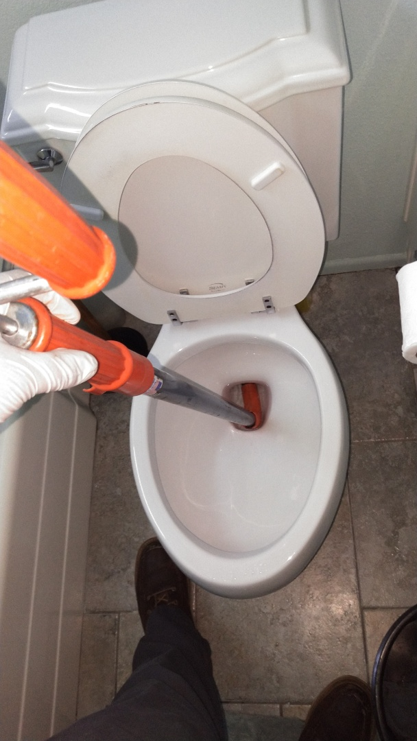 Walnut, CA - Cleared toilet stoppage
