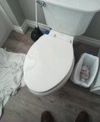 Snaked toilet drain