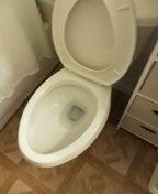 Snaked toilet