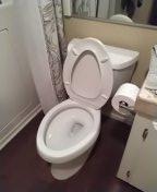 Santa Ana, CA - Snaked toilet stoppage