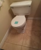 Torrance, CA - Installed flange, reset toilet and changed a section of drain