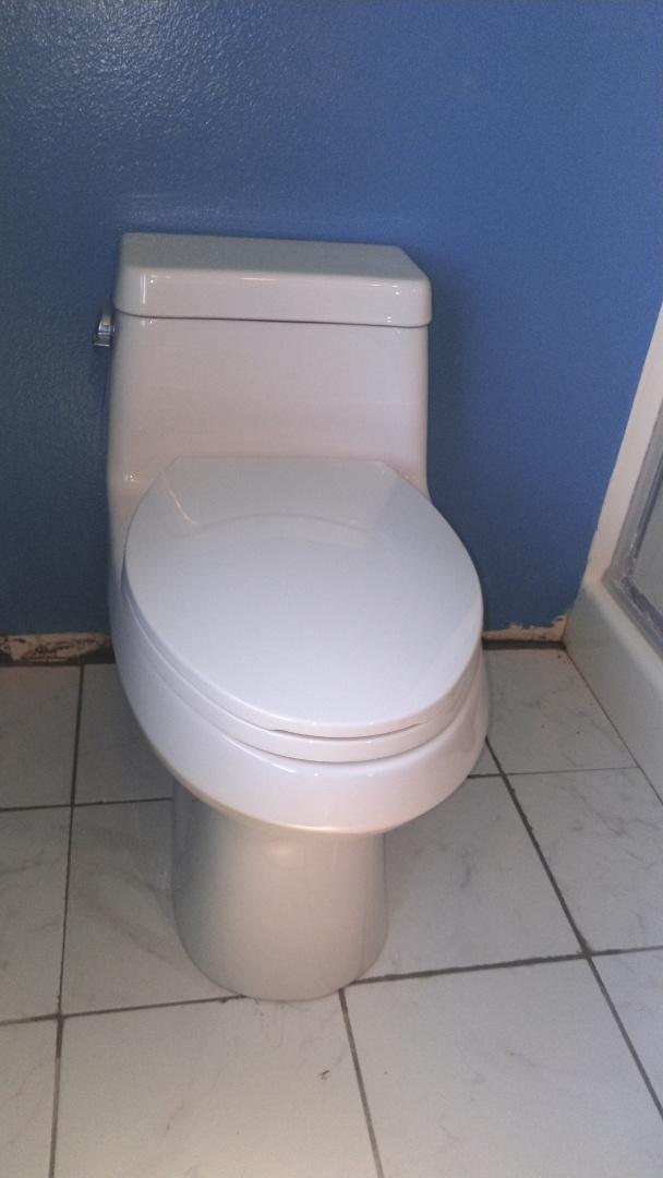 Long Beach, CA - Toilet install