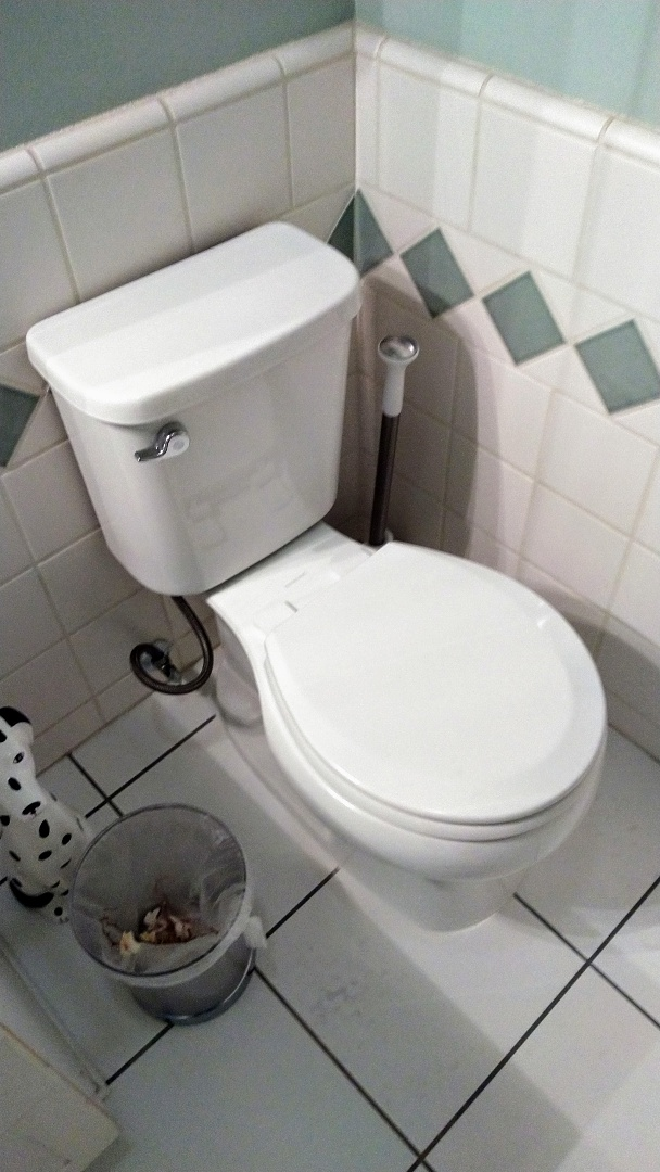 Install new toilet in the upstairs hallway bathroom.