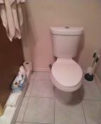 Reset toilet.