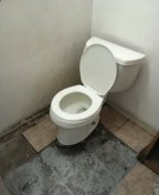 Pomona, CA - Toilet pull and reset