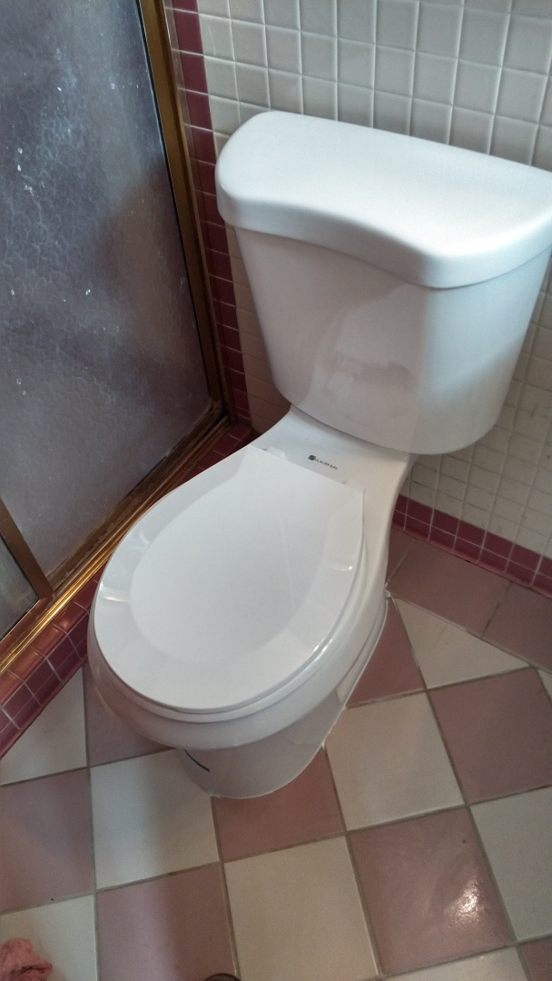 Rowland Heights, CA - Glacier Bay ADA toilet installation