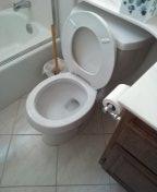 Auger toilet