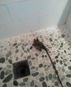 Shower stoppage c