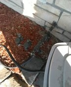 Westminster, CA - Check water pressure