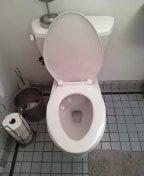 Manhattan Beach, CA - Installed new toilet