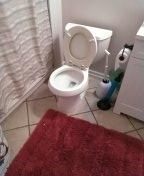 Mission Viejo, CA - Toilet reset