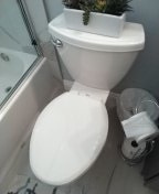Trabuco Canyon, CA - Pull and rest toilet