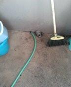 Tustin, CA - Hydrojetted kitchen drain
