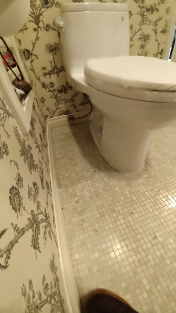 Newport Beach, CA - New toilet install