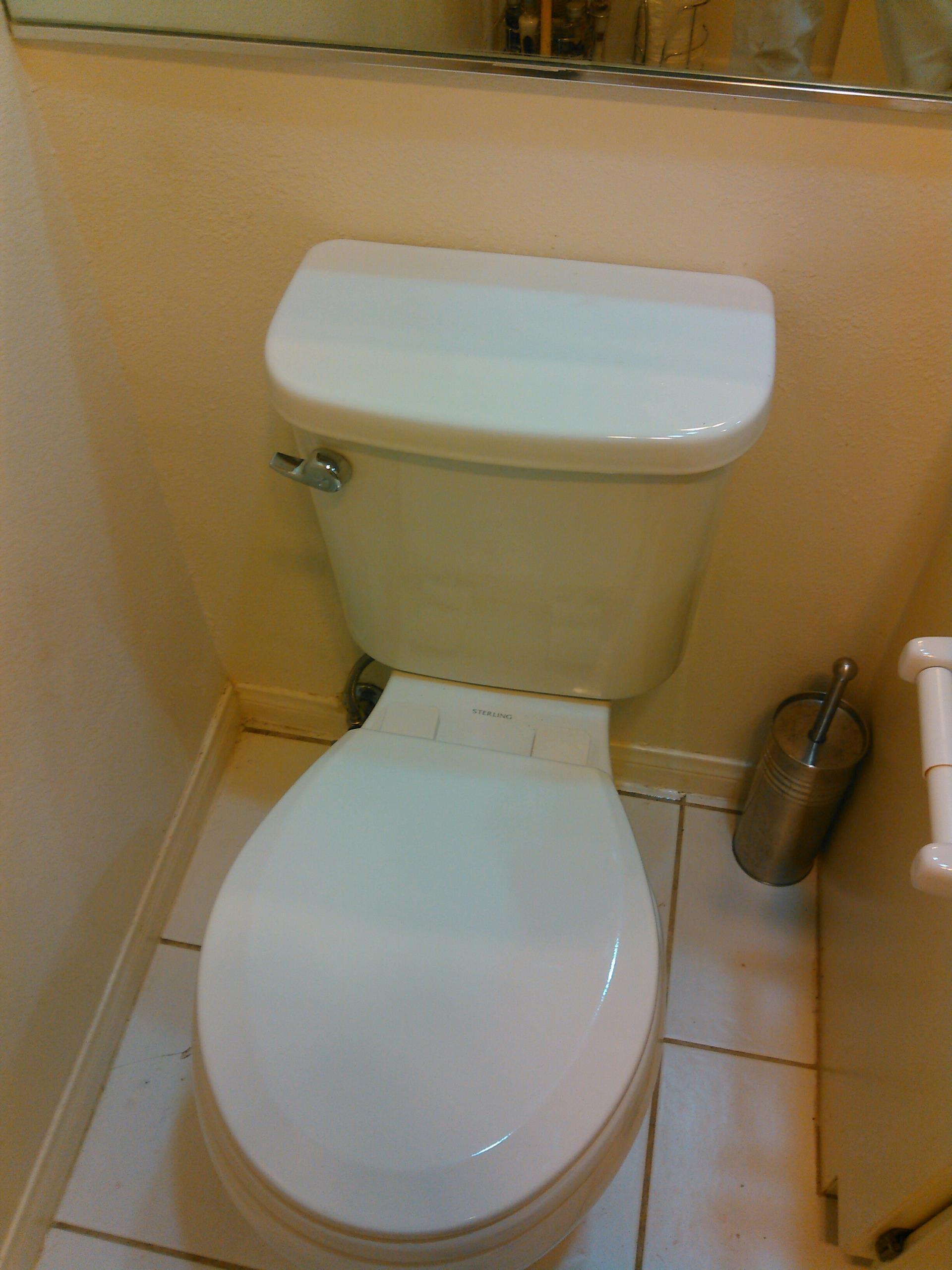 Valencia, CA - Toilet stoppage