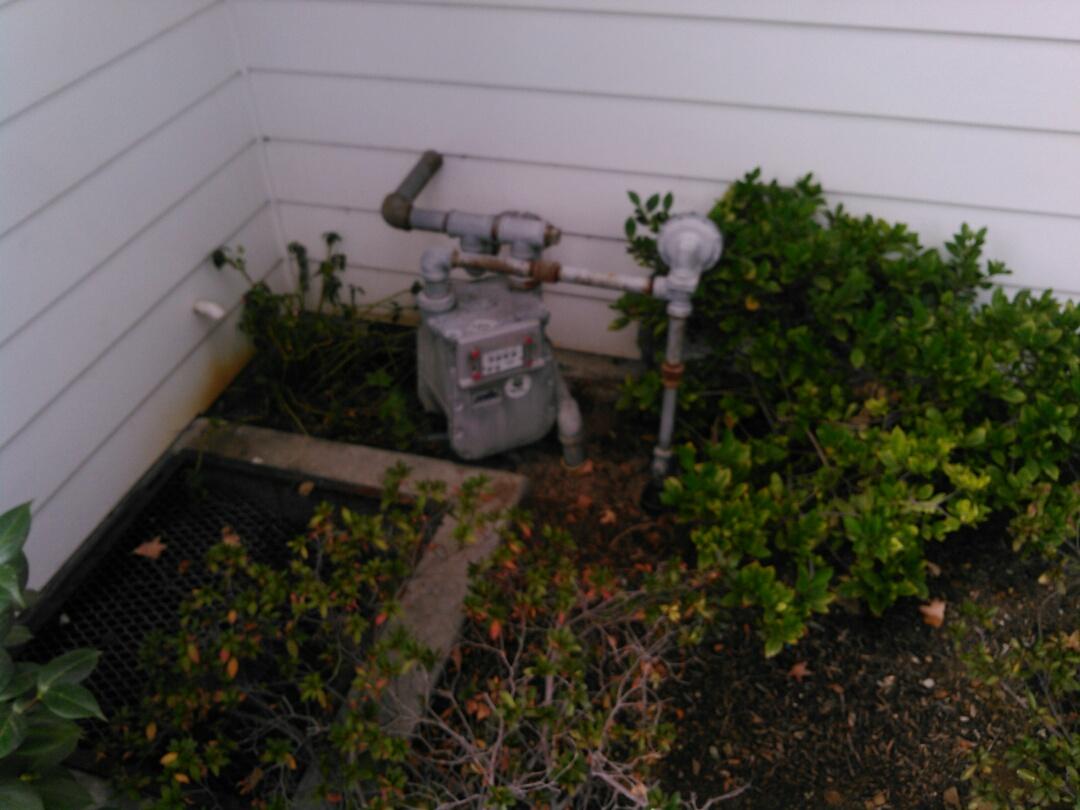 La Canada Flintridge, CA - Annual maintenance plumbing inspection.
