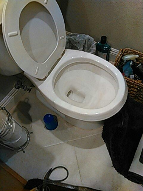 Duarte, CA - Toilet stoppage