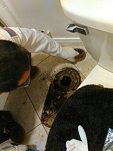 Rowland Heights, CA - Wax ring replacement