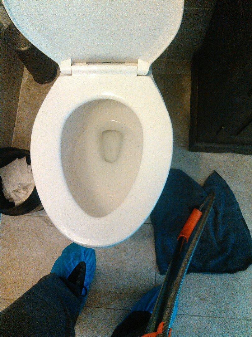 Thousand Oaks, CA - Toilet stoppage