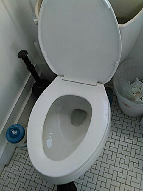 Westminster, CA - Toilet stoppage
