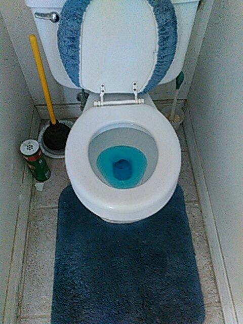 Moorpark, CA - Toilet stoppage