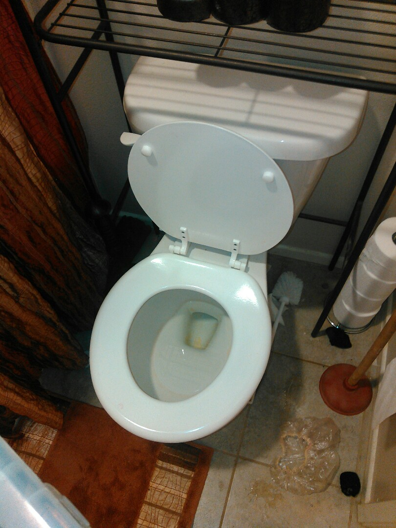 Cleared toilet stoppage