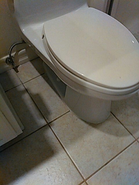 Laguna Woods, CA - Pull and resented toilet