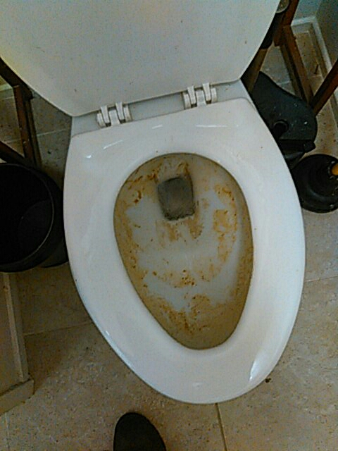 El Monte, CA - Ran ogger snake to clear toilet stoppage