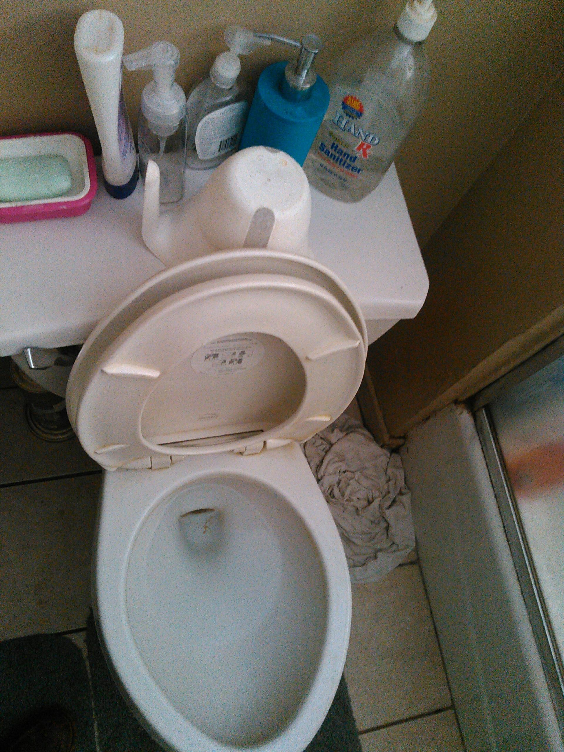 Arcadia, CA - Toilet repair