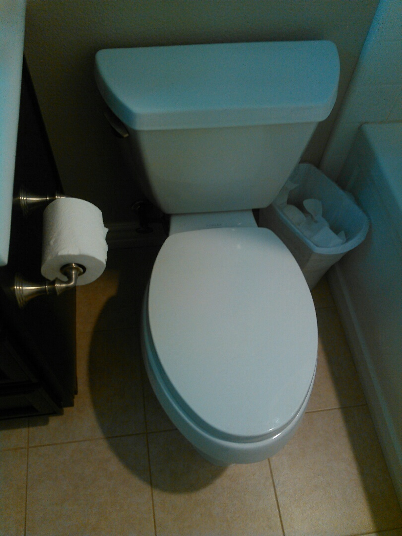 Aliso Viejo, CA - Pull and reset toilet and cleared stoppage