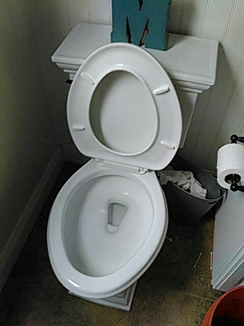 Dana Point, CA - Snaked toilet drain