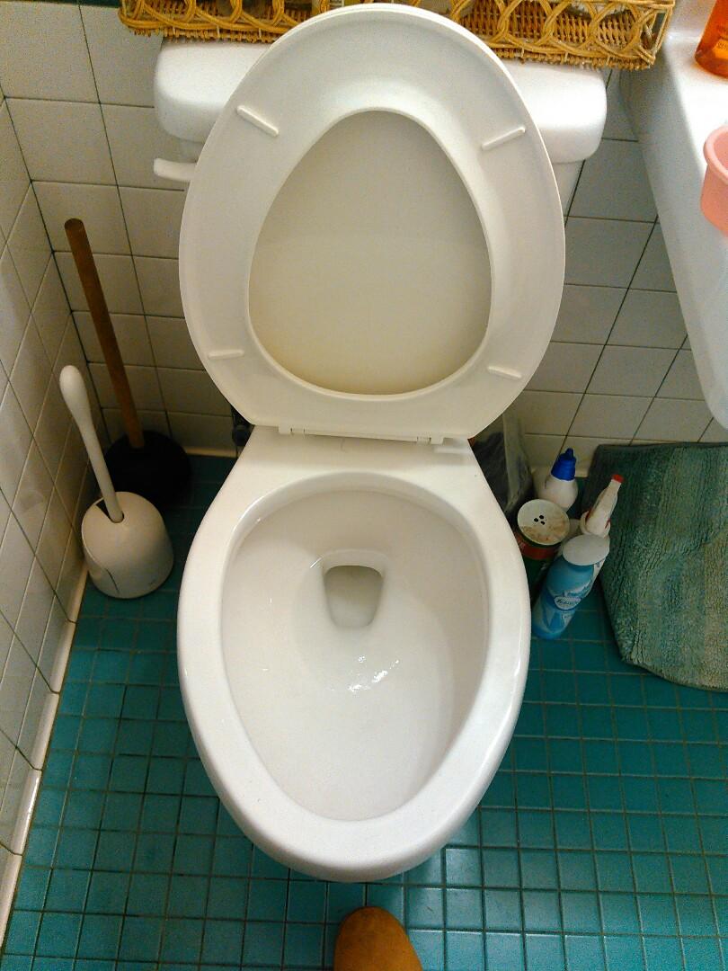 Covina, CA - Toilet stoppage