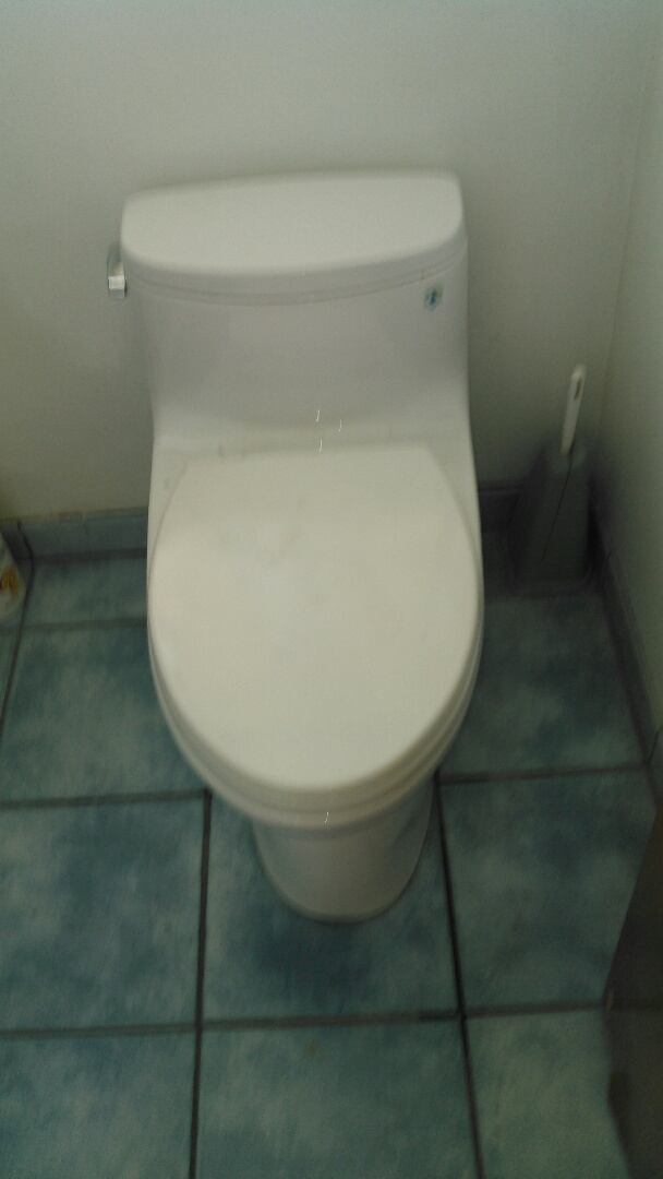 San Fernando, CA - Auger toilet to clear stoppage