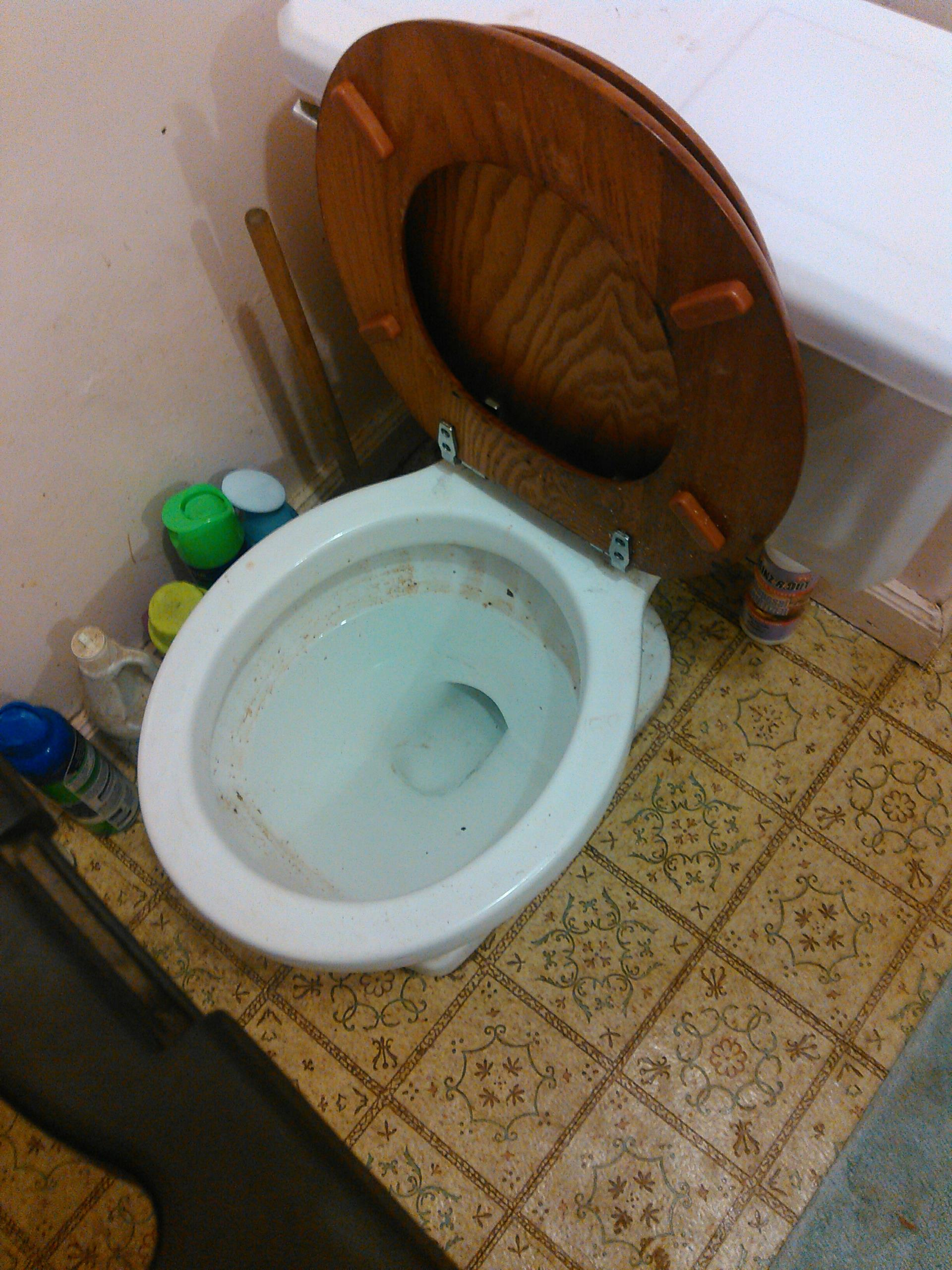 Rancho Cucamonga, CA - Toilet repair