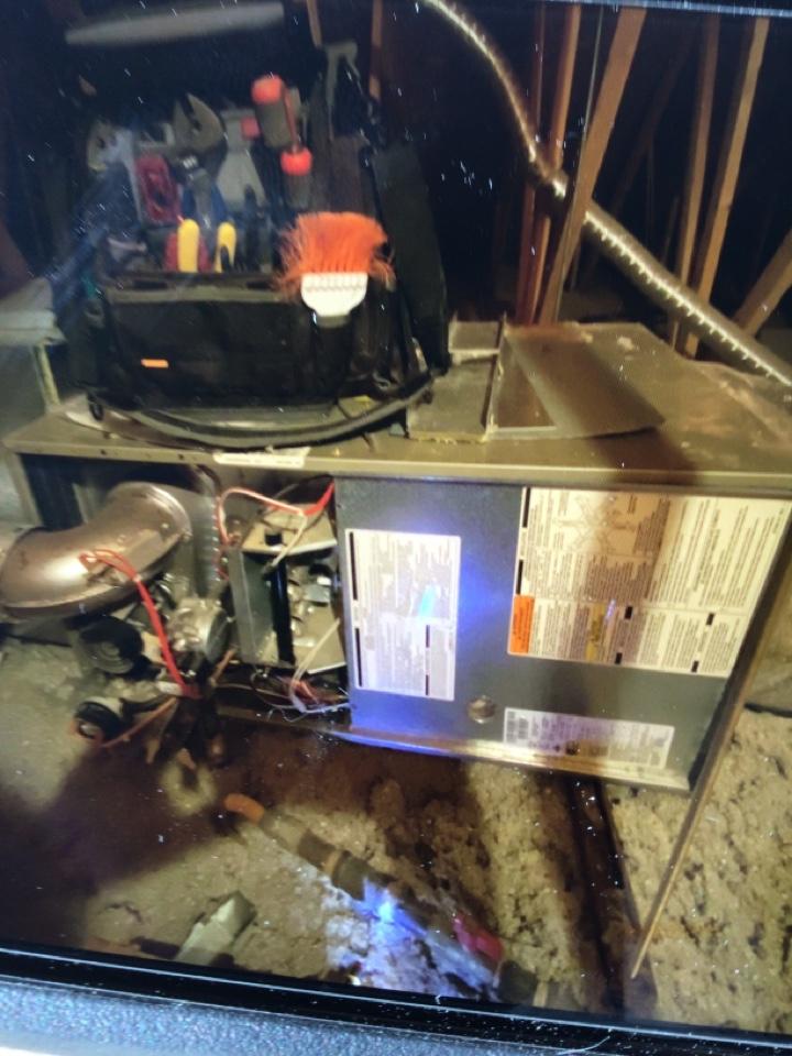 Washington, UT - Bryant furnace tune up