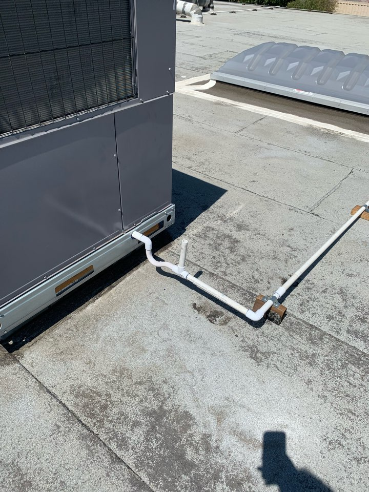 Pico Rivera, CA - Fixing drain issues here in Pico Rivera