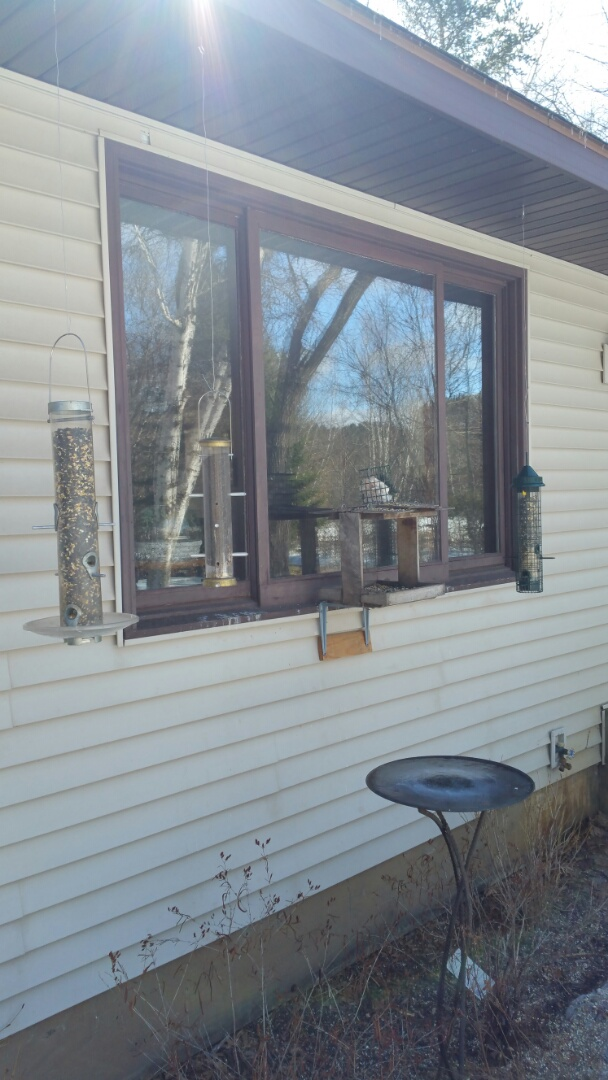 Brainerd, MN - Renewal by Andersen Better Living Concepts. Quoted 6 windows.