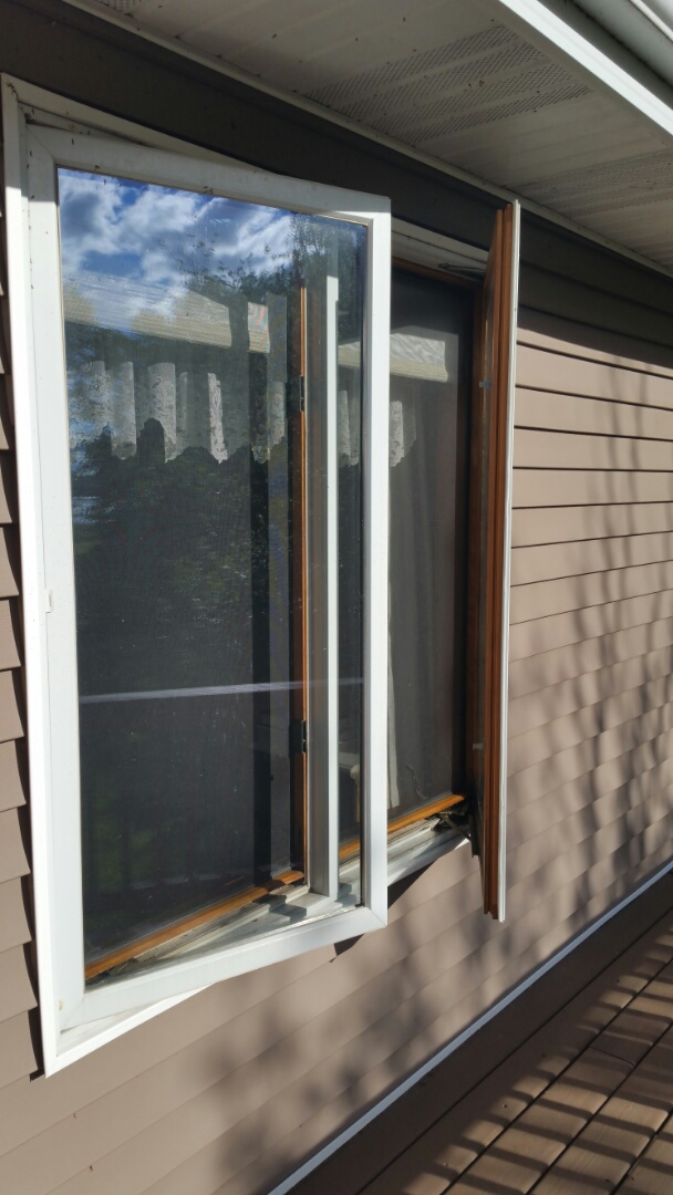 Park Rapids, MN - Renewal by Andersen Better Living Concepts sold a patio door and window.