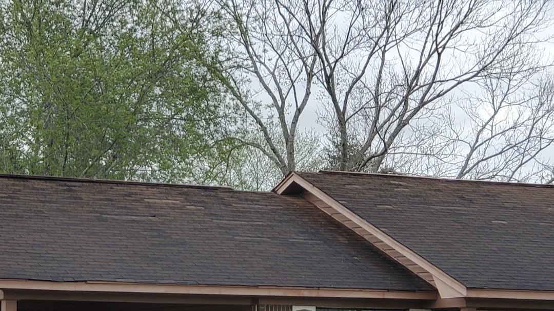 Moundville tornado damage