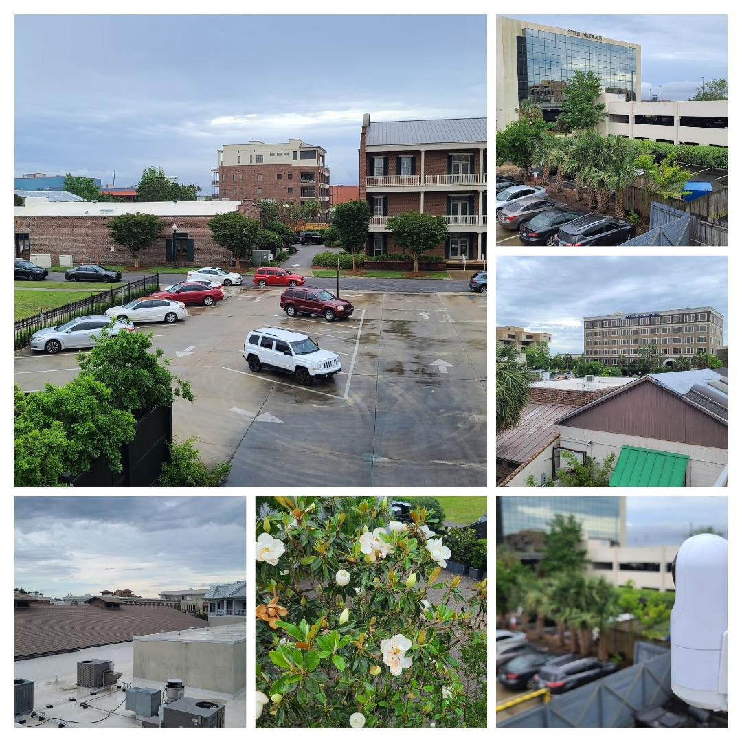 Sometimes we have the best office view, repairing cameras in between raindrops @thegardenpensacola